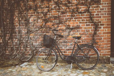 Wall mural Vintage bicycle leaning on the wall