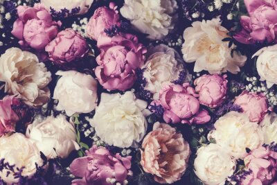Wall mural Vintage bouquet of pink and white peonies. Floristic decoration. Floral background. Baroque old fashiones style image. Natural flowers pattern wallpaper or greeting card