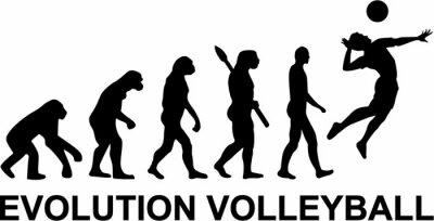 Wall mural Volleyball Evolution