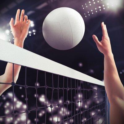 Wall mural Volleyball match