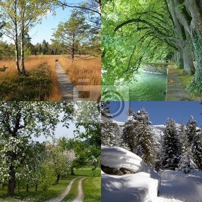 Walk through the Seasons