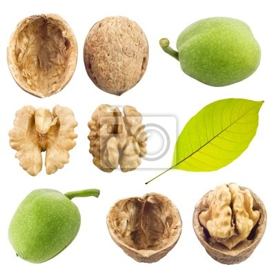 Wall mural walnuts collection