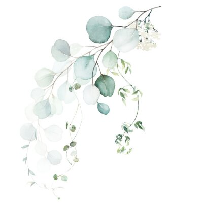 Wall mural Watercolor floral illustration bouquet - green leaf branch collection, for wedding stationary, greetings, wallpapers, fashion, background. Eucalyptus, olive, green leaves, etc.