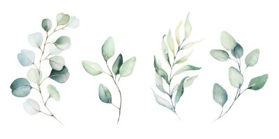 Wall mural Watercolor floral illustration set - green leaf branches collection, for wedding stationary, greetings, wallpapers, fashion, background. Eucalyptus, olive, green leaves, etc.