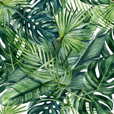 Wall mural Watercolor hand painted seamless pattern with green tropical leaves of monstera, banana tree and palm on white  background.