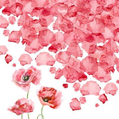 Wall mural Watercolor petals of a poppy