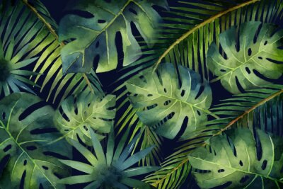 Wall mural Watercolor vector banner tropical leaves and branches isolated on dark background.
