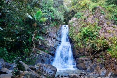 Wall mural Waterfall