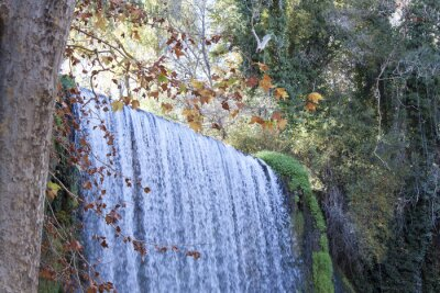 Wall mural waterfall in autumn full of leaves