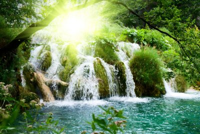 Wall mural waterfall in deep forest