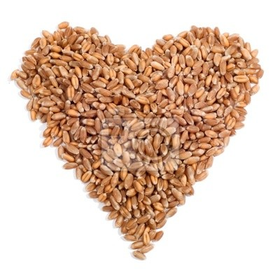 wheat in the form of a heart isolated on white background