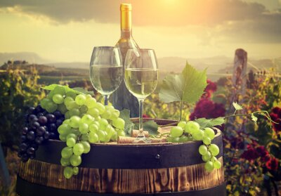 Wall mural White wine with barrel on vineyard in Tuscany, Italy