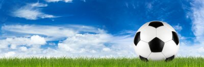 Wall mural wide retro soccer ball on grass banner in front of blue cloudy sky