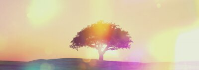 Wall mural Widescreen sunset tree landscape with retro effect