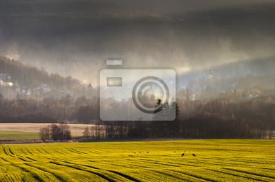 Wieś we mgle