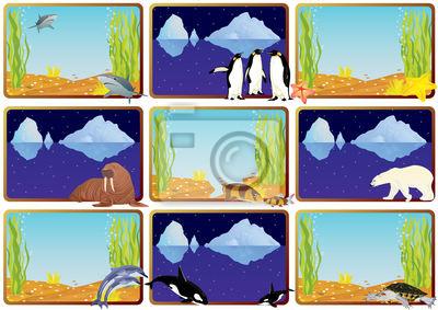 Wall mural Wildlife