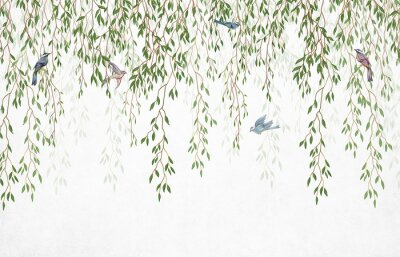 Wall mural Willow branches hanging from above with birds on a white background. Wallpaper, murals and wall paintings for interior printing.