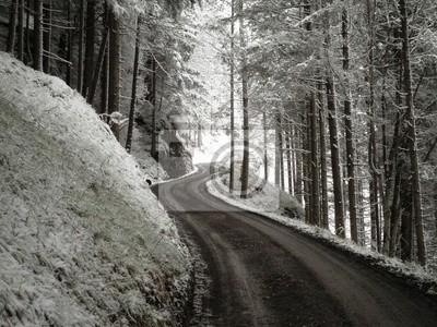 Winter Meandering Road