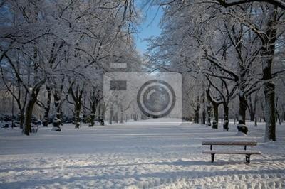 winter park 9