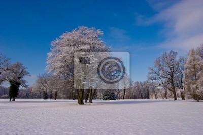 Winterlandschaft in Potsdam