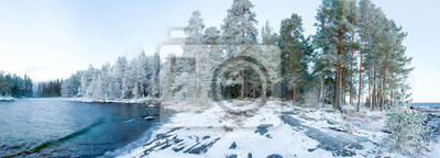 Wintry forest near lake panorama
