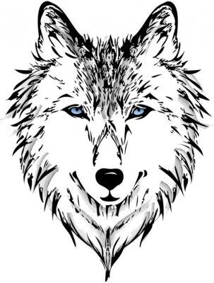Wall mural Wolf head