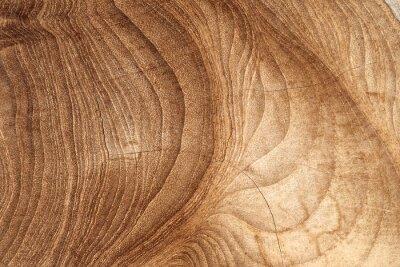 Wall mural Wood texture