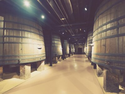 Wall mural  wooden barrels in old cellar