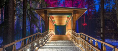 Wall mural Wooden bridge in the forest park. Night multicolored lights.