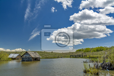 Wall mural Wooden cabin flooded in water