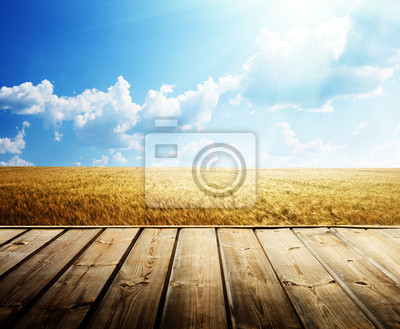 wooden floor and summer wheat field