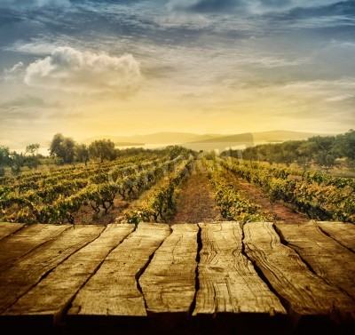 Wall mural Wooden table. Spring design with vineyard and empty display. Space for your montage. Autumn grapes harvest