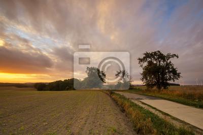 Wschód słońca nad polami i wiejską drogą