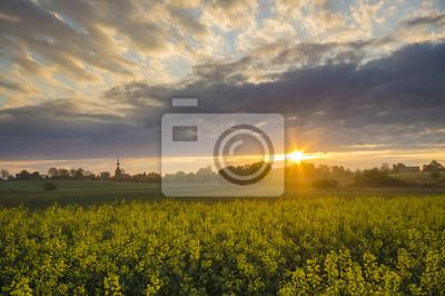 Wschód słońca nad wiosennym polem