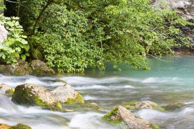 Wall mural Река находится в горах Абхазии и впадает в голубое озеро.