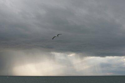 Морской пейзаж в пасмурную погоду