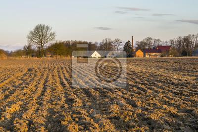 Zaorane pole nieopodal wsi