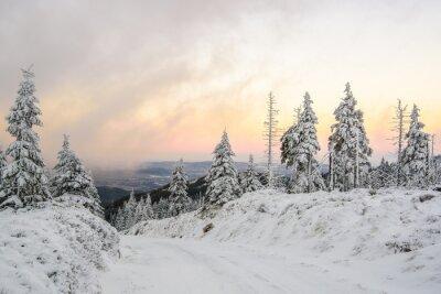 Wall mural Zimowa droga w górach