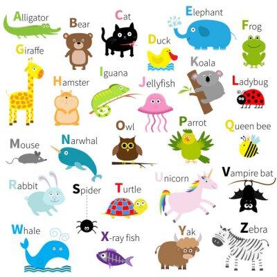 Wall mural Zoo animal alphabet. Cute cartoon character set. Isolated. White design. Baby children education. Alligator, bear, cat, duck, elephant, frog, giraffe, hamster, iguana, jellyfish, koala Flat design.