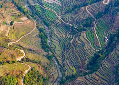 Poster Aerial view of paddy fields near Pokhara