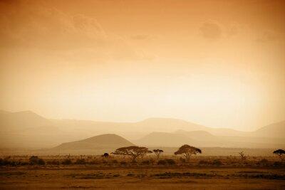 Poster african savannah at sunrise