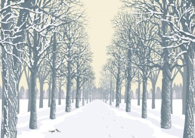 Poster Alley with snowy trees silhouettes in a park