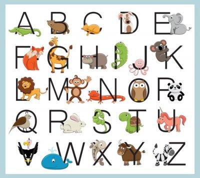 Poster Alphabet animals