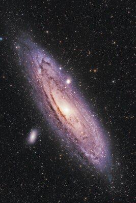 Poster Andromeda Galaxy