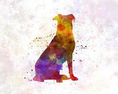 Poster Beauceron in watercolor