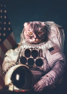 Poster Beautiful cat astronaut.