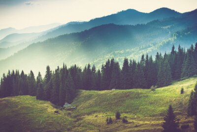 Poster Beautiful summer mountain landscape.
