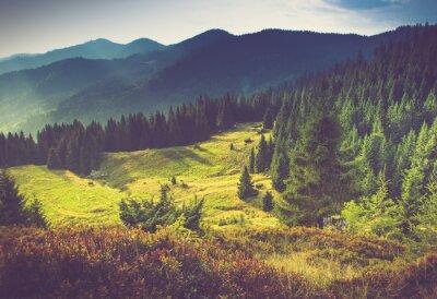 Poster Beautiful summer mountain landscape at sunshine.