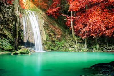 Poster Beautiful waterfall in autumn forest