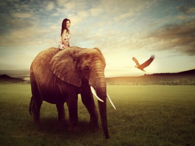 Poster beautiful woman sitting on an elephant